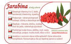 Info obrazok jarabina Fruit Facts, Korn, Natural Health, Life Is Good, Blueberry, Ale, Detox, Raspberry, Berries