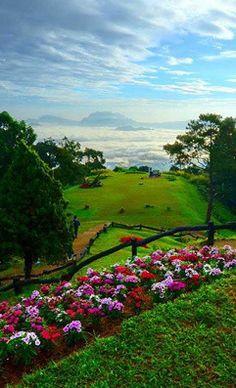 #Huai_Nam_Dang_National_Park at #Chiang_Mai - #Thailand http://en.directrooms.com/hotels/subregion/1-1-1/