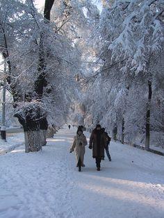 Almaty winter street