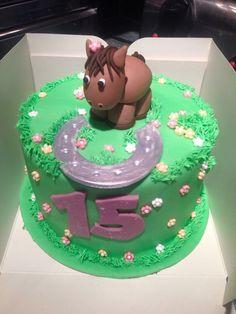 Horse horseshoe birthday cake
