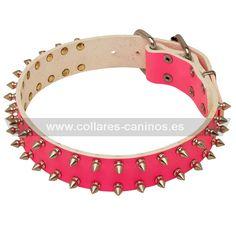 Collar de cuero rosado decorado con dos filas de pinchos de acero cromado para perros Cane Corso - S33P