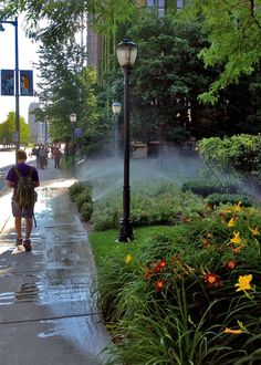 Sprinkler time near Marquette Hall at Marquette University.