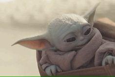 Star Wars Love, Star Wars Baby, Yoda Gif, Yoda Species, Momo Yaoyorozu, Yoda Funny, Creepy Guy, Star Wars Pictures, Very Scary