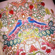 Uzun bir aradan sonra #art #artwork #book #brightcolors #birds #color #colors #coloring #drawing #enchantedforest #flowers #gizemliorman #hobby #johannabasford #kitap #kuş #leaf #dal #painting #relax #therapy #yaprak #softcolors