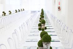 Sleek long tables with clear ghost chairs and green centerpieces in rustic silver pots