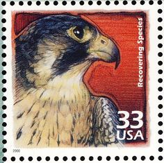 united+states+themed+stamps | country stamps from united states file united stamp7037falcon jpg
