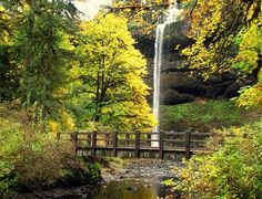 Silver Falls State Park | Year-round cabin getaway in the Oregon Cascades