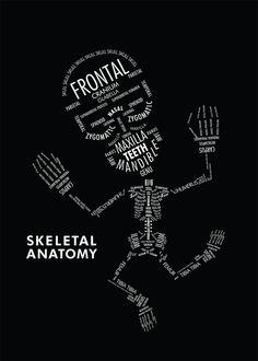 Skeletal Anatomy - Skullspiration.com - skull designs, art, fashion and more