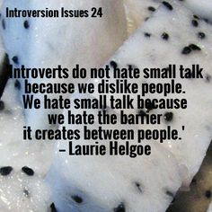 Introverts do not hate small talk because we dislike people. We hate small talk because of the barrier it creates between people.