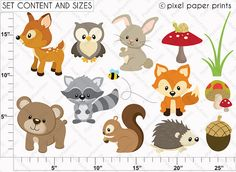 Woodland Animals Clip art and Digital paper door pixelpaperprints