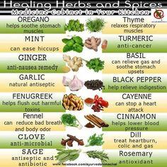12 Best Gardens images   Natural Remedies, Healing herbs