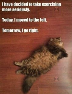 fitness memes | Funny-exercise-meme-quotes-laughing-time-have-fun-hilarious-photos-OMG ...