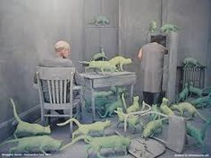 Sandy Skoglund  Pretty sure this may someday be a sculpture of my home!