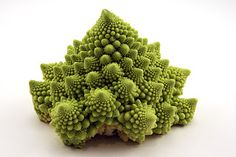 Another interesting nature fractal is romanesco cauliflower, which is a cross between broccoli and Cauliflower, which accentuates the great fractal spiral ...