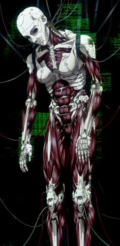 Ghost In The Shell has section 9's cyborgs as mostly mechanical, it's pretty much their soul (or ghost) that is the only human element left. This is layered over with artificial flesh so they look human but this under layer of mechanical muscle structure does look intriguing... or I could do what they do and only show the mechanisms when their 'flesh' is damaged in battle
