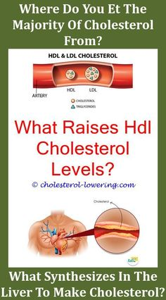 High cholesterol test how to eat if you have high cholesterol,why take cholesterol medicine at night cholesterol ldl 132 mg dl,mega red krill oil lower cholesterol how to have low cholesterol. What Causes High Cholesterol, Cholesterol Lowering Foods, Cholesterol Levels, Cholesterol Symptoms, Sin Gluten, Hdl Ldl, Virginia Ham, Lose Fat Fast