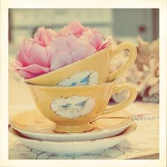 I love these little bird teacups. Darling for Spring or Summer tea.