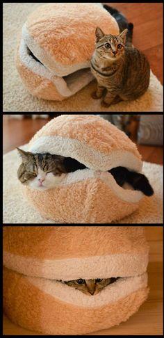 Blog Serius: Serius Neko - Bantal Kucing Berbentuk Macaron Yang Comel Melampau (9 Gambar)