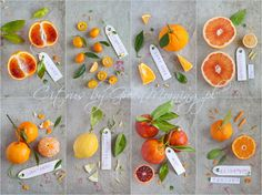 MORE PHOTOS HERE : www.pl/cytrusy/ Done for a client, the producer of organic citruses. Morning Photography, Food Photography, Garden Inspiration, Food Inspiration, Wedding Inspiration, Japanese Garden Zen, Citrus Garden, Food Design, Afternoon Tea