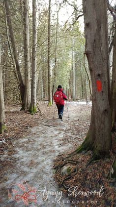 Speed River Hiking Trail in Guelph (Guelph Nature Photographer) Hiking Trails, Ontario, Country Roads, River, Nature, Plants, Rivers, Flora, Nature Illustration
