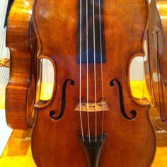 Nicola Bergonzi viola, 1781