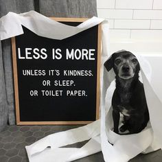 Less is more. . . Funny quote, FUL candles, letterfolk, cute dog,