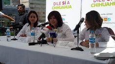 Presenta Lucía Chavira declaración 3 de 3; tiene un patrimonio de más de 7 mdp   El Puntero