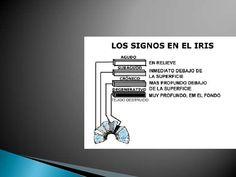 09<br />Iris constitucion 4<br />