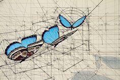 Bizi doğa ile bağlayan Rafael Araujo'nun altın oran el çizimi illüstrasyon koleksiyonundan oluşan boyama kitabı artık yayına hazır. Venezuellalı bir mimar olan Araujo yaklaşık 40 yıldır doğay…