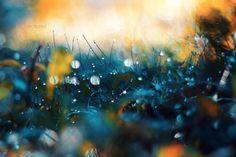 Faraway Enchantment by John-Peter