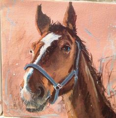 Tonker the heavy horse