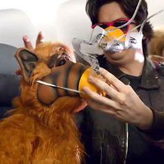 11 Most Entertaining Airline Safety Videos. Via T+L (www.travelandleisure.com).