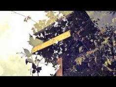 ▶ Medison & Dashiel Beats - You Hav Me - YouTube