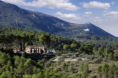 Hiking trip Nature Park Carrascal de la Font Roja, Alcoy, Spain