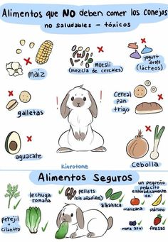 Muesli, Cilantro, Yogurt, Comics, Rabbits, Animal Anatomy, Basil, Rabbit, Comic Book