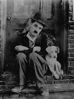 Charlie Chaplin, 1918, Une Vie De Chien, A Dog'S Life