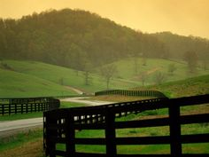 Not sure where this is... but it reminds me of Virginia and Kentucky... black fences and greeeeeen grass.