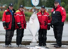 Our friends from Japan! …and a big beautiful Halibut, Naden Harbour, BC. Halibut Fishing, Whale Watching, Big And Beautiful, Canada Goose Jackets, Winter Jackets, Japan, Friends, Winter Coats, Amigos