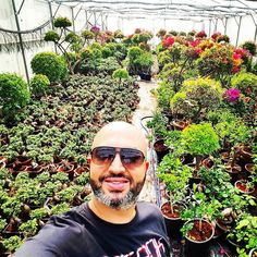 For those who do not know me yet my Name is Wissam 37 years old from Beirut Lebanon. My passion for agriculture and farming started since many years ago. It all started as a hobby to grow plants flowers and vegetables in my garden. I realized that the future in agriculture is hydroponics. I started my hydroponic agriculture business with a small field of 300 m2 of greenhouse area growing mainly tomatoes and cucumbers. Then I was introduced to an investor who was concerned by my current…