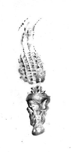 tribal tattoos alligator - Google Search