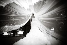 """Why We Love It:Simply breathtaking! We love this incredible photo under the veil.Why You Love It:""""It is just beautiful!"""" —Magdalena V. I just love it! I can't put it into words.""""—Patience D. """"Yeah... what she said!""""—Lauren M.Photo Credit:Alain Martinez Photography"""