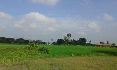 auraiya nepal village