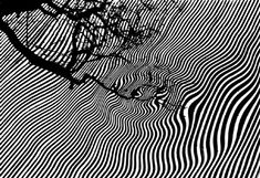 Stunning Abstract Black and White Photography - noupe