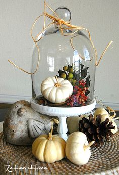 Google Image Result for http://tatertotsandjello.com/wp-content/uploads/2012/10/fall-cloche-centerpieces1.jpg