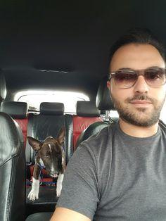 #bullterrier #zarathebullterrier  #dog #animal