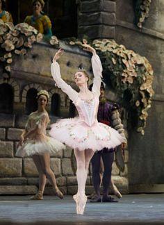 gillian murphy - sleeping beauty is by far my most favorite ballet Ballerina Dancing, Ballet Tutu, Ballet Dancers, Ballerinas, Ballet Barre, Ballet Costumes, Dance Costumes, Sleeping Beauty Ballet, Ballet Photos