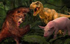 Bear Vs Dinosaur Fight Elephant Gorilla Lion Tiger T-Rex Pig Cartoon Din...