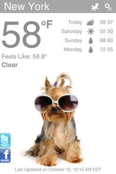 Weather Puppy...an weather app for dog lovers! Love it!