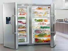 full fridge and freezer   Full Size Refrigerator and Freezer with the vegeteble