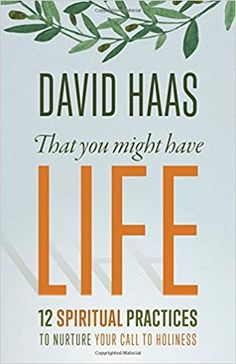 No matter where we are in our life journey, we all feel the desire for something more, something transcendent that gives our life meaning. How do we connect to that spiritual dimension? How do we nurture it? In this very personal book, David Haas helps us to see that holiness is the key to our search, and holiness begins when we realise that we are God's beloved children. Haas offers 12 spiritual practices that can help us grow closer to God and one another by embracing God's unconditional…